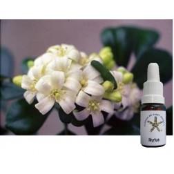 Floral de Saint Germain Myrtus  10 ML